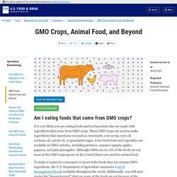 GMO Crops, Animal Food, and Beyond