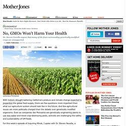 No, GMOs Won't Harm Your Health