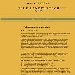 Schwarzerdeentstehung GNL