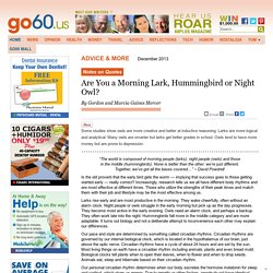 Go60 - Are You a Morning Lark, Hummingbird or Night Owl?