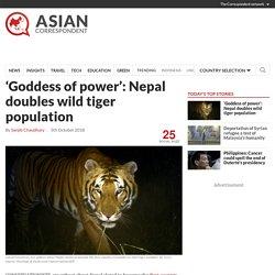 'Goddess of power': Nepal doubles wild tiger population