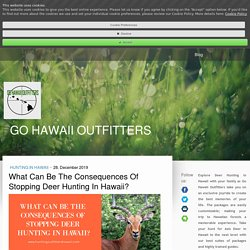 What Can Be The Consequences Of Stopping Deer Hunting In Hawaii? - gohawaiioutfitters