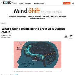 What's Going on Inside the Brain Of A Curious Child?