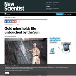 Gold mine holds life untouched by the Sun