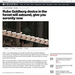 Rube Goldberg device in the forest will astound, give you serenity now - The Feed