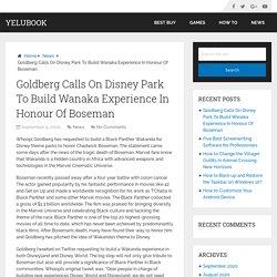 Goldberg Calls On Disney Park To Build Wanaka Experience In Honour Of Boseman – YeluBook