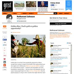 Golden Rice: Fool's gold or golden opportunity?