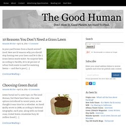 The Good Human | Sustainability, Environment, Progressive Politics, Peak Oil, Being Green