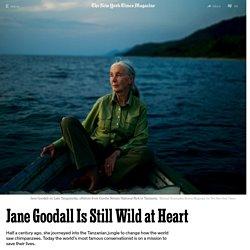 Jane Goodall Is Still Wild at Heart
