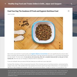 Feed Your Dog The Goodness Of Fresh and Hygienic Nutritious Food