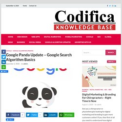 Google Panda Update – Google Search Algorithm Basics