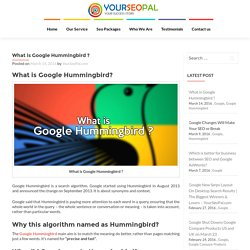 What is Google Hummingbird? – YourSeoPal.com
