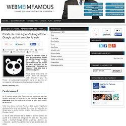 Panda, la mise à jour de l'algorithme Google qui fait trembler le web