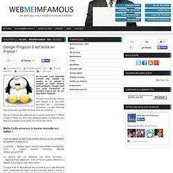 Google Pingouin 2 est lancé en France !