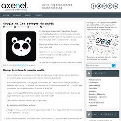Google et les ravages du panda