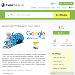 Wix Google Webmaster Tools setup in $15 only