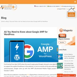 Google AMP for WordPress – All You Need to Know [Detailed Guide]