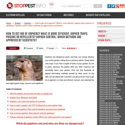 How to get rid of gophers: The Top-8 gopher traps, poisons, repellents