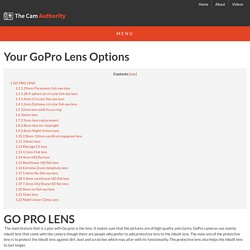 2014 GoPro Lense Options