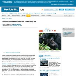 Goo-goo-gorillas have their own kind of baby talk - life - 01 June 2012