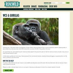 Run for the Wild Bronx Zoo: WCS & Gorillas - Wildlife Conservation Society