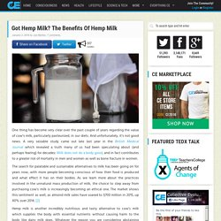 Got Hemp Milk? The Benefits Of Hemp Milk