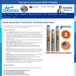 Goulds Submersible 4'' Well Pumps - GS Stainless Steel Series