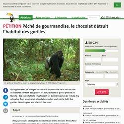 Péché de gourmandise, le chocolat détruit l'habitat des gorilles