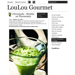 LouLou Gourmet - Citronnade - Menthe au Thermomix