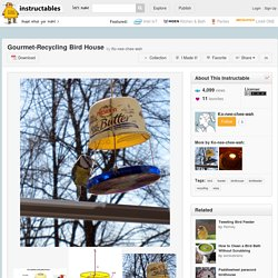 Gourmet-Recycling Bird House - All