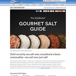 Sea Salt & Gourmet Salts - Guide | SaltWorks