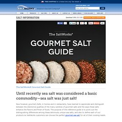 Sea Salt & Gourmet Salts - Guide