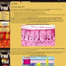 Le Goût - Les colorants alimentaires