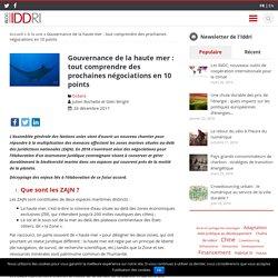 Gouvernance de la haute mer : tout comprendre des prochaines négociations en 10 points - Iddri Blog