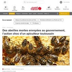 Des abeilles mortes envoyées au gouvernement, l'action choc d'un apiculteur toulousain