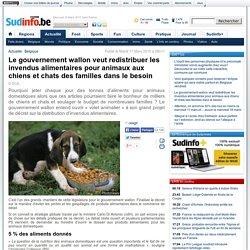 Le gouvernement wallon veut redistribuer les invendus alimentaires pour animaux aux chiens et chats des familles dans le besoin