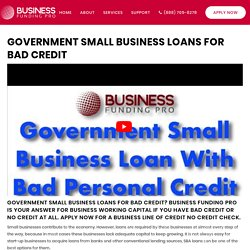 Government Small Business Loans Bad Credit
