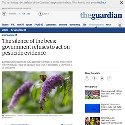 The silence of the bees: government refuses to act on pesticide evidence