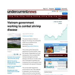 UNDERCURRENTNEWS 09/07/13 Vietnam government working to combat shrimp disease