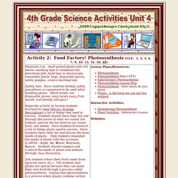 4th Grade Science Unit 4 Activity 2