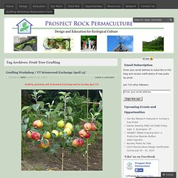 Prospect Rock Permaculture