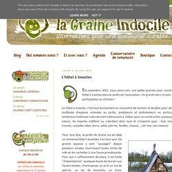 La Graine Indocile: L'hôtel à insectes