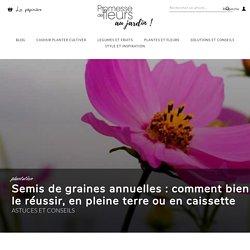 Le semis de graines de fleurs annuelles, en pleine terre ou en terrine - Blog Promesse de fleurs