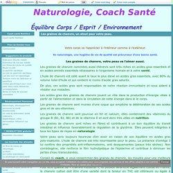 Les graines de chanvre, un atout pour votre peau. - Naturologie, Coach Santé