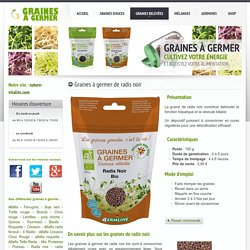 Graines à germer et germoirs: graines de radis noir