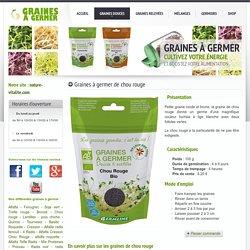 Graines à germer et germoirs: graines de chou rouge