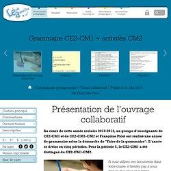 Grammaire CE2-CM1 + activités CM2