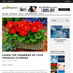 Learn the Grammar of Love through Flowers – Guide 2 Brighton