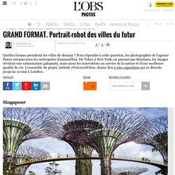 GRAND FORMAT. Portrait-robot des villes du futur