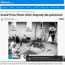 5 V: Grand Press Photo 2016: Nagrody dla gnieźnian! - naszemiasto.pl